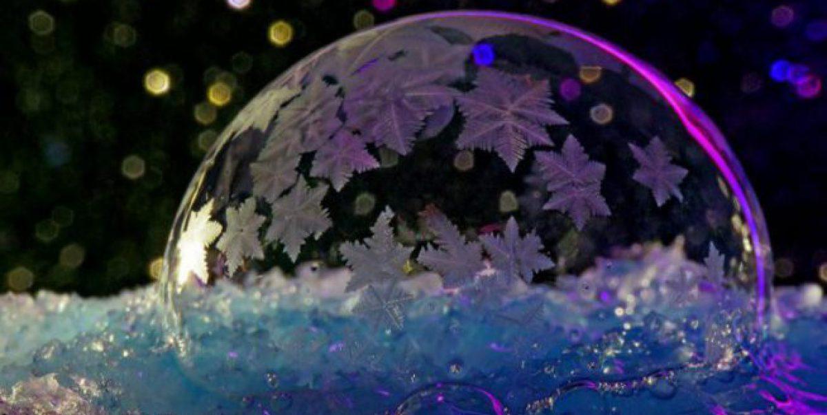 Dans ma bulle il y a…